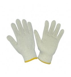 COTTON GLOVE 12 PAIR /PKT