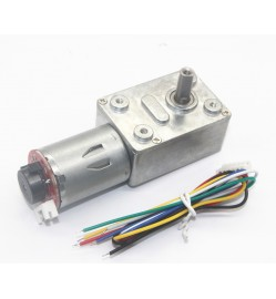 JGY370 Self-Locking Force, Worm Gear DC Slowdown Encoder Gear Motor (12V 100RPM)