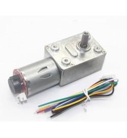 JGY370 Self-Locking Force, Worm Gear DC Slowdown Encoder Gear Motor (12V 10RPM)
