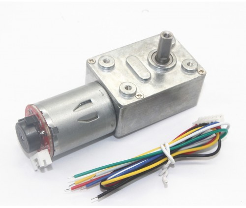 JGY370 Self-Locking Force, Worm Gear DC Slowdown Encoder Gear Motor (12V 30RPM)
