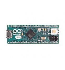 Arduino Micro (Italy)